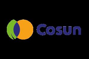 iffi logo's leden_cosun color
